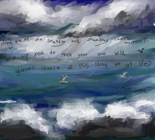 Mary Oliver one chance