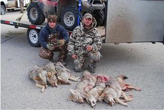 Cabela's sponsored coyote killing