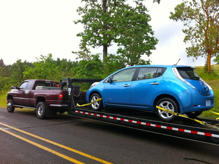 Nissan Leaf leaves