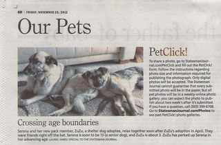 Pet Click Statesman Journal
