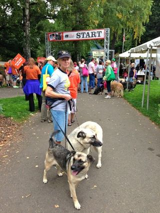 Portland Strut Your Mutt 2