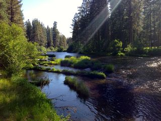 Metolius River at sunset