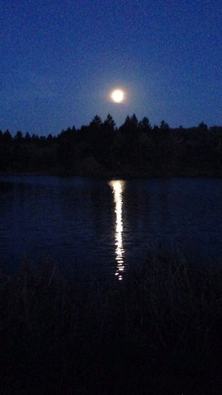 Moon over Spring Lake