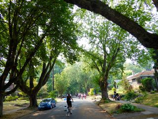 Portland Sunday Parkways 6