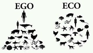 Ego and Eco