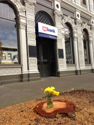 US Bank tree with flower