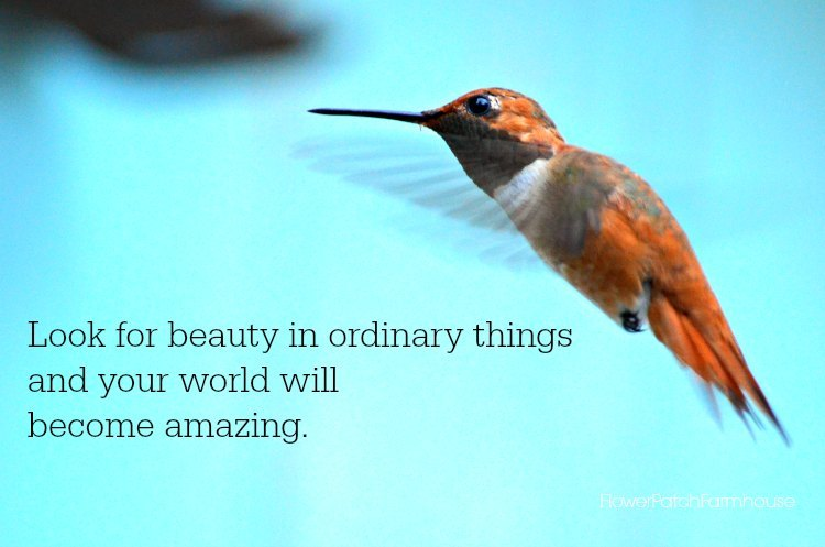 Ordinary things