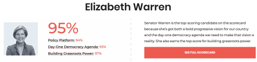 Warren Indivisible