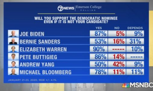 Poll of support for Dem nominee