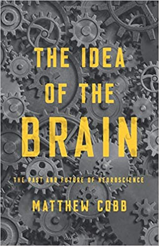 Idea of the Brain