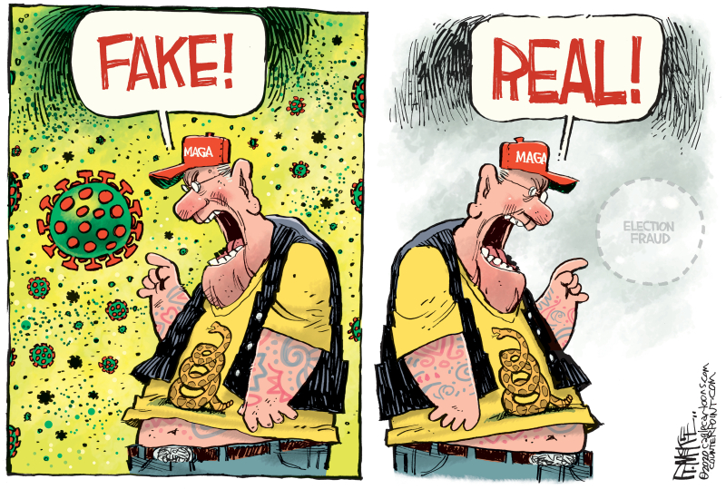 Fake and real