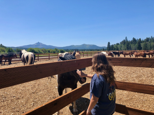 Evelyn Vos and Black Butte Ranch horses