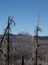 Mt_jefferson_from_canyon_creek_mead