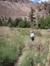 Trail_past_alder_springs2