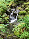 Little_north_santiam_real_zen