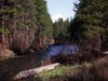 Mt_jefferson_over_metolius