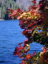 Suttle_lake_october_color